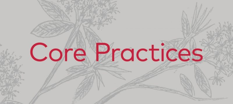 Core Practices Beta 2017 - A Complete List with Links To Each Practice